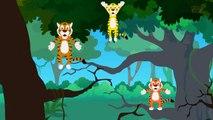Five Big Tigers _ Tigers-D6nMOWXDss