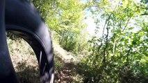fat bike les ANDELYS falaise golden retriever