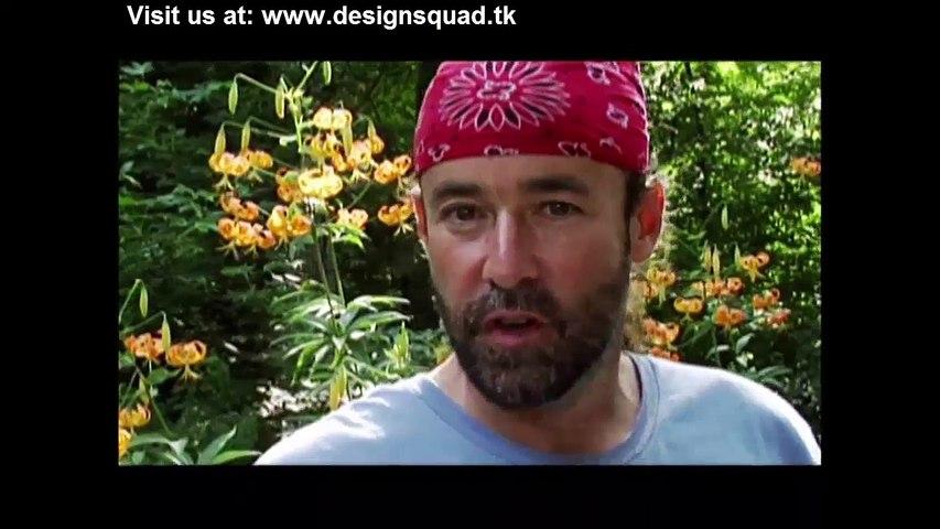 Design Squad by Odd Squad - dailymotion