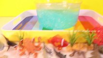 DIY SHARK Toys Slime Aquarium Fish Tank - Toy Sharks, Sea Animals, Toys and Slime _ Craft Videos-FGWk-0
