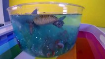DIY SHARK Toys Slime Aquarium Fish Tank - Toy Sharks, Sea Animals, Toys and Slime _ Craft Videos-FGWk-0r