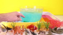 DIY SHARK Toys Slime Aquarium Fish Tank - Toy Sharks, Sea Animals, Toys and Slime _ Craft Videos-FGWk-0rOW