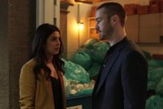 Watch [Online] s2e20 Quantico Season 2 Episode 20 (Full S-E-R-I-E-S)