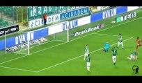 All Goals & Highlights HD - Bursaspor 0-5 Galatasaray - 01.05.2017