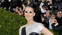 Celine Dion Owned the Met Gala With Her Hilarious Video Booth Shoot -- Watch!
