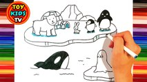 How to draw Arctic Animals | Penguin from Happy feet | Cartoon and Illustration