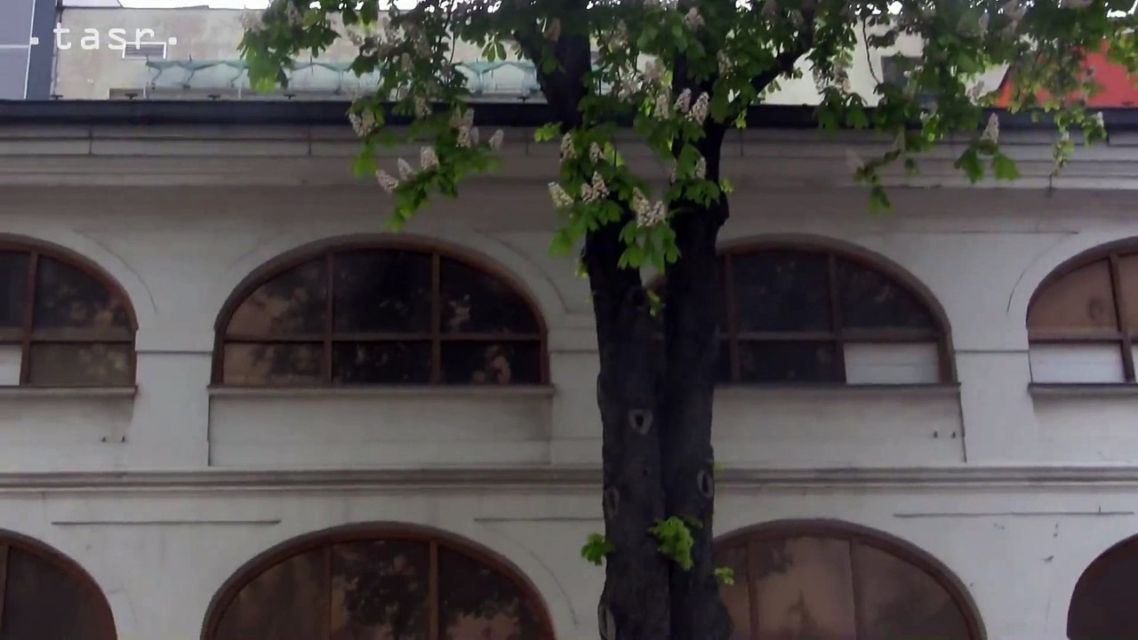 SNG: Rekonštrukcia Slovenskej národnej galérie