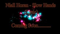 Niall Horan - Slow Hands (Lyric)