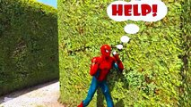 Hulk and Spiderman lost in labyrinth! Cartoon for kids with 3d animation and colors