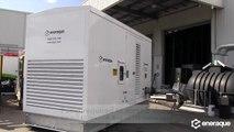 Diesel Generators Australia