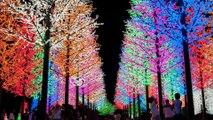 Un voyage de rêve dans les villes les plus colorées du monde