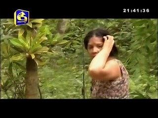 Bhawathra 05/05/2017 - 35
