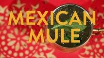 Mexican Mule Drink Recipe