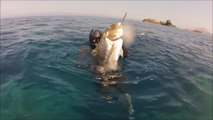 Spearfishing - Chasse sous marine en Corse - Marc Breysse - CORSE - Video Award 2016 (720p_30fps_H264-192kbit_AAC)