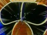 Image sp + vidéo picolo et sangoku vs raditz