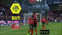 But Yannis SALIBUR (55ème) / EA Guingamp - Dijon FCO - (4-0) - (EAG-DFCO) / 2016-17