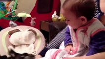best-funny-babies-funny-babies-compilation-amazing-babies-dancing-funny-baby-13