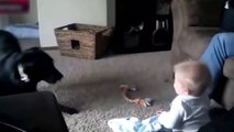best-funny-babies-funny-babies-compilation-amazing-babies-dancing-funny-baby-12