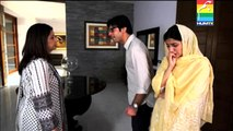 HumSafar Last Episode (23) HD Full Screen HD AMAZING DRAMA