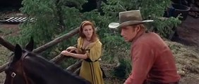 Stagecoach (1966) Adventure, Western (Gordon Douglas / Ann-Margret, Alex Cord, Red Buttons) part 2/2