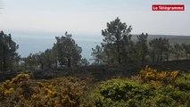 Crozon. 4.000 m² de landes partent en fumée