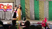 Maiv Ntsuab Vaj Talent - Merced Hmong New Year 2014-2015 Pageant