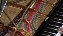 Beethoven - Piano Concerto No. 1 (Rudolf Buchbinder, Wiener Philharmoniker) +