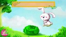 Mon petit lapin 'Cherchez moi coucou coucou'-yfJ1G