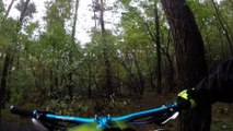 Mountain Bike Riders Riding in The Woods