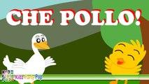 Canzoni per bambini - Che Pollo! Canzoncine per pulcini e paperine