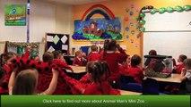 Animal Man Mini Zoo _ Animals and Children _ Kids Parties Glasgow _ Childrens Parties