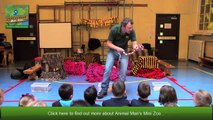 Animal Man's Mini Zoo Educational Visits _ Kids Parties Glasgow _ Childrens Parties