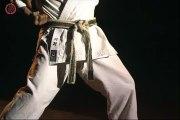 Shotokan Karate - Masao Kawazoe 2 - Kihon part1 (Кихон в Каратэ)