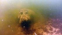 Plongée Avec L'Hippopotame - Mission Monstres Marins.