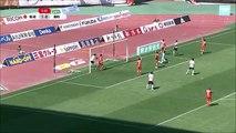 Niigata 1:1 Urawa (Japanese J League. 14 May 2017)