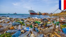Half of the Great Pacific Garbage Patch may be history in just 5 years