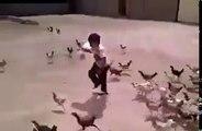 Ce gamin a voulu nourrir les poules et va vite le regretter... Attaque en mode Zombies