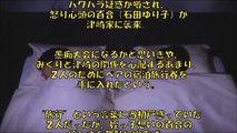 【恋ダンス6話予告】新垣結衣&星野 源ドラマ「逃げ恥」ストーリーは?