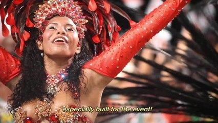 Various Artists - Documentário Sobre O Carnaval Do Rio De Janeiro 2014