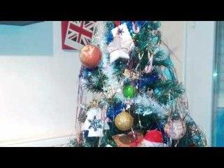 Les Sapins de Noel 2015 des internautes de Momes.net