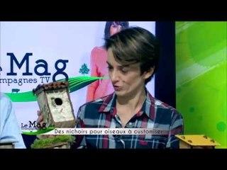 Customiser un nichoir à oiseaux - Mag de Campagnes TV