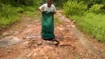 A man release a lot of snakes   horrible moment of releasing these snakes