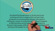 Find Best Scuba Diving Certification in NZ at Affordable Price