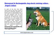 Waterproof & Rechargeable dog shock training collars - Doged Collars