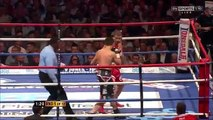 Carl Froch vs Lucian Bute - Knockouts & Highlights