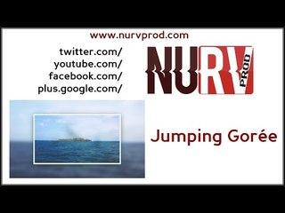 Nurv Prod - Jumping Gorée