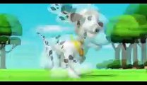 Paw Patrol Pups Save a Ghost Clip 1