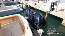EVINRUDE 150 HO E-TEC Engine Reviews (2 stroke) - By