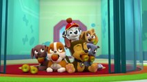 Paw Patrol - S 4 E 6 - Pups Save the Critters