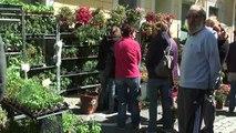 Hautes-Alpes : Gros succès pour la 1e édition du marché du printemps à St Bonnet en Champsaur